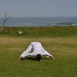 Prasarita Padottanasana - Wide Leg Forward Bend