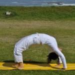 Urdhva Dhanurasana - Upward Facing Bow Pose