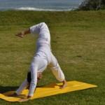 Eka Pada Adho Mukha Svanasana - Raised Leg Downward Facing Dog Pose